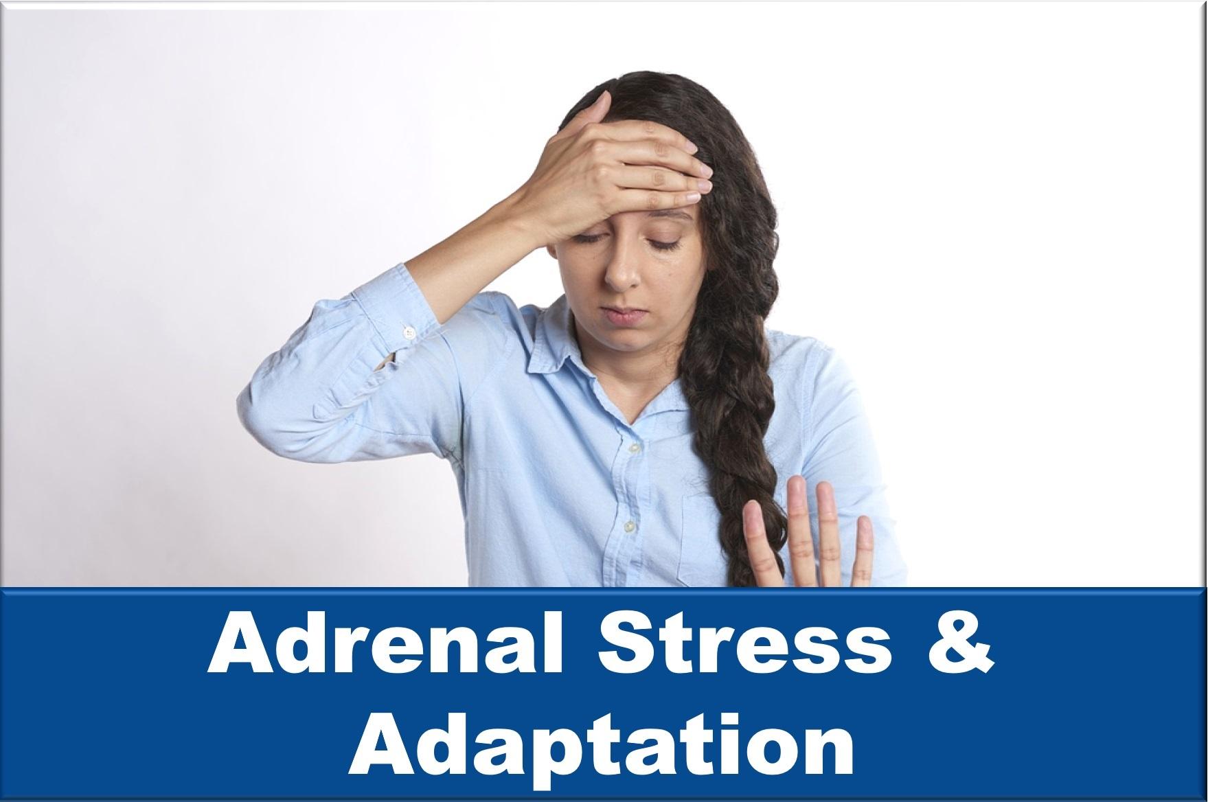 Adrenal Stress and Adaptation