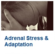 Learn about Adrenal Stress & Adaptation