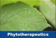 Phytotherapeutics