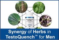 Synergy of Herbs in Testoquench™ For Men