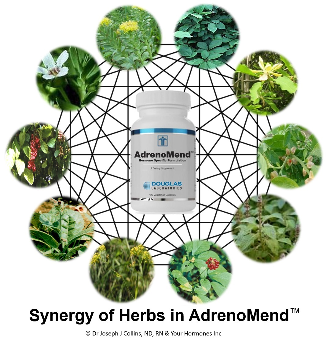 Specific Actions & Synergy of AdrenoMend™ Herbs