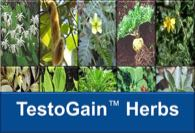 Learn about the herbs in TestoGain™ at YourHormones.com