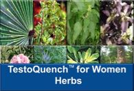 Learn about the herbs in TestoQuench™ for Women at YourHormones.com