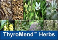 Learn about the herbs in ThyroMend™ at YourHormones.com